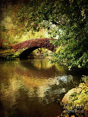 Photograph - Central Park In Autumn Texture 6 by Dorothy Lee