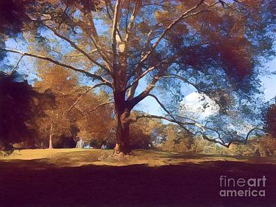 Photograph - Central Park In Autumn - The Old Tree by Miriam Danar