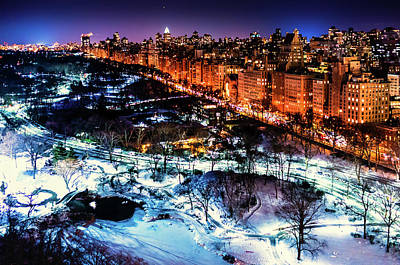 Photograph - Central Park In Winter by M G Whittingham