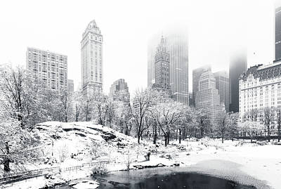 Winter Storm Photograph - Central Park by Mihai Andritoiu