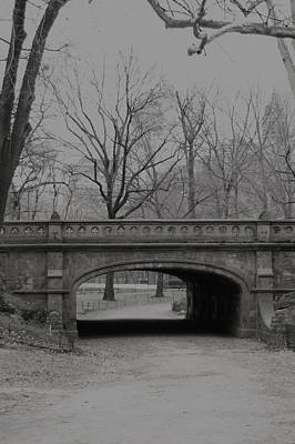 Photograph - Central Park Nyc by Henri Irizarri