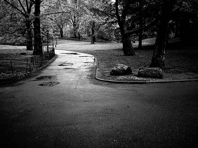 Photograph - Central Park Path V by M G Whittingham