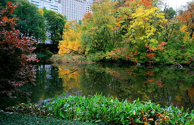 Photograph - Central Park Pond Fall by Christopher Kirby