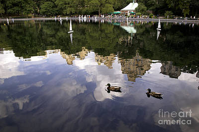 Toy Boat Photograph - Central Park Pond With Two Ducks by Madeline Ellis