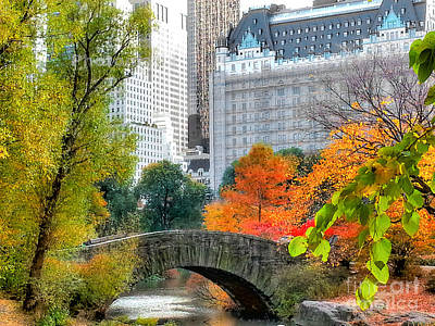 Photograph - Central Park by Raymond Earley