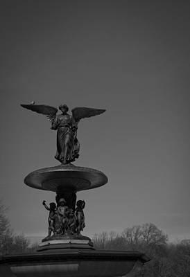Stephen White Photograph - Central Park by Stephen White