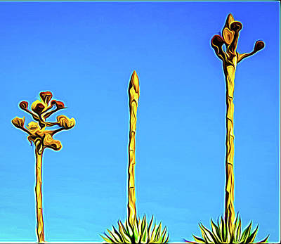 Photograph - Century Plant by Randy J Heath