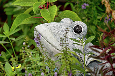 Photograph - Ceramic Frog by John Black