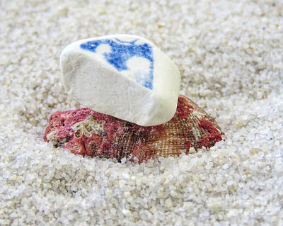 Photograph - Ceramic Sea Glass And Seashell by Janice Drew