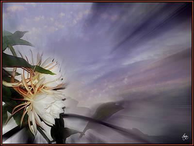 Photograph - Cereus Sunrise by Wayne King