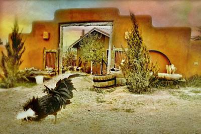 Photograph - Cerrillos Rooster by Diana Angstadt