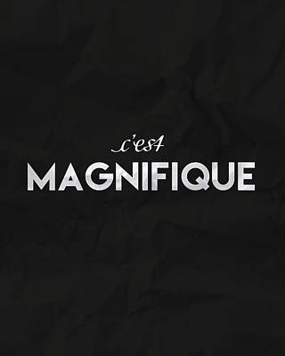 Writing Digital Art - c'est Manifique by Samuel Whitton