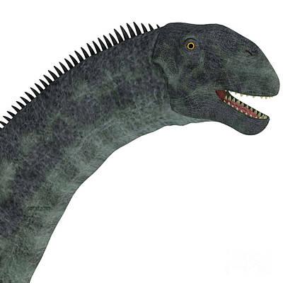 Cetiosaurus Dinosaur Head Art Print