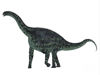 Cetiosaurus Dinosaur Side Profile Art Print