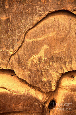 Photograph - Chaco Horse Petroglyph by Adam Jewell