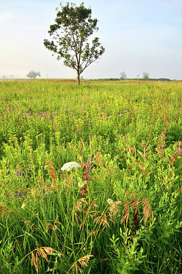Photograph - Chain-o-lakes State Park Native Prairie by Ray Mathis