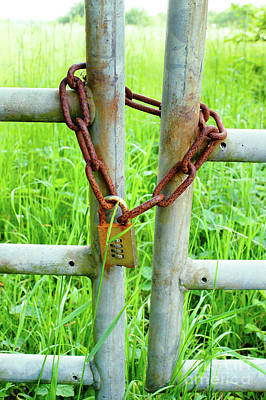Photograph - Chain On A Gate by Tom Gowanlock