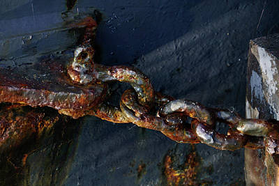 Photograph - Chained - 365-176 by Inge Riis McDonald