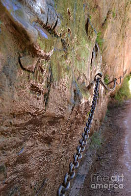 Photograph - Chains On Hike Lower Emerald Pools Zion by Heather Kirk