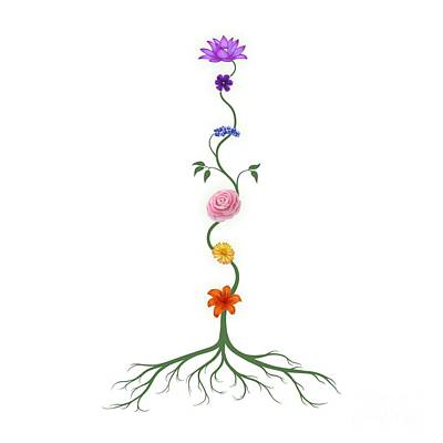 Chakras Photograph - Chakras Shown As Flowers On Stem Growing From Root Art  by Awen Fine Art Prints