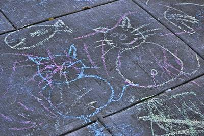 Photograph - Chalk Cats by JAMART Photography