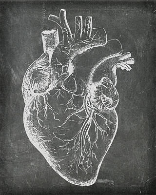 Digital Art - Chalkboard Anatomical Heart by Renee Hong