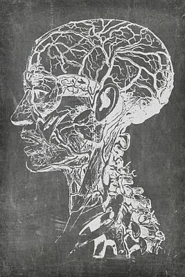 Digital Art - Chalkboard Medical Art by Renee Hong