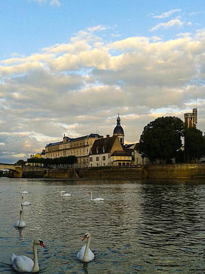 Wall Art - Photograph - Chalons Sur Saone Swans by Adrian O Brien