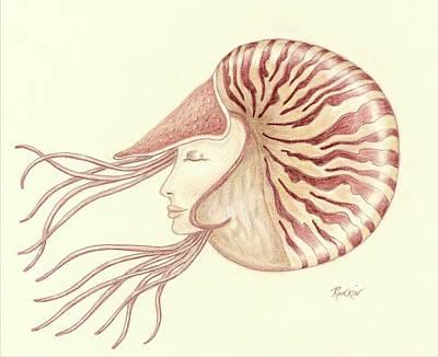 Chambered Nautilus Art Print by K S Rankin