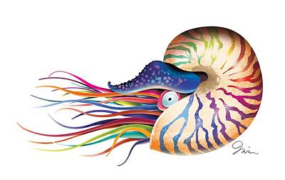 Tropical Fish Digital Art - Chambered Nautilus On White by Trevor Irvin