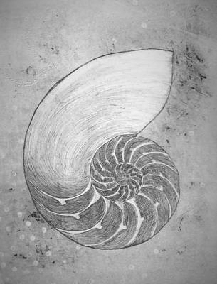 Painting - Chambered Nautilus Study In Grey by Lisa Le Quelenec