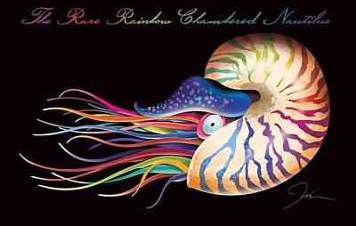 Barracuda Digital Art - Chambered Nautilus by Trevor Irvin