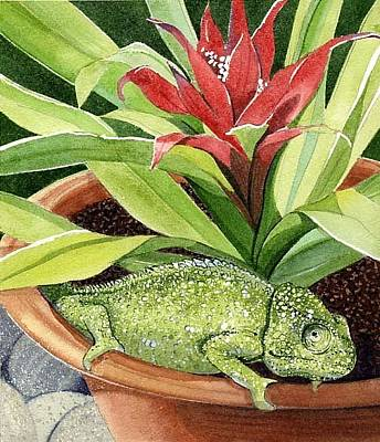 Bromeliad Painting - Chameleon by Denny Bond