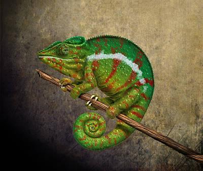 Chameleon Art Print by Kathie Miller