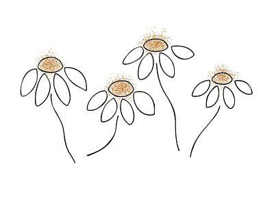 Flower Abstract Drawing - Chamomile by Frank Tschakert