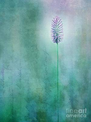 Chandelle Art Print by Priska Wettstein