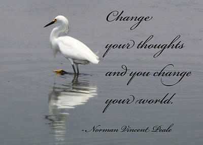 Photograph - Change by Captain Debbie Ritter