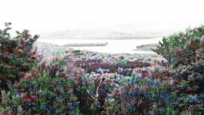 Maine Landscape Mixed Media - Change Of Seasons by Mike Breau