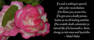 Photograph - Change Ye Into Roses by Baha'i Writings As Art