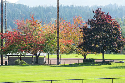 Photograph - Changing Leaves At Skagit Valley Play Field by Tom Cochran