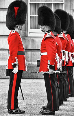 Photograph - Changing Of The Guards by Mihaela Pater