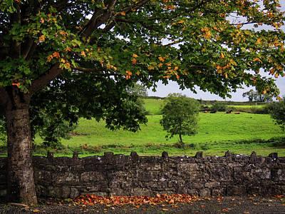 Photograph - Changing Season In The Irish Countryside by James Truett