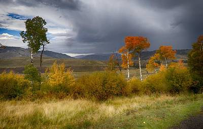 Photograph - Changing Seasons At Yellowstone by Linda Shannon Morgan