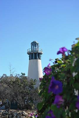 Photograph - Channel Islands Harbor Lighthouse Purple Flowers by Matt Harang