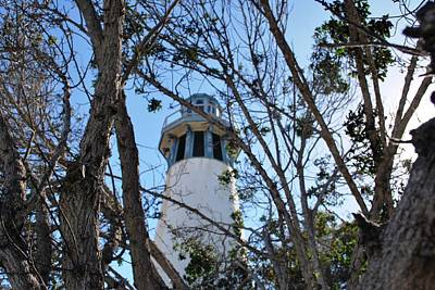 Photograph - Channel Islands Harbor Lighthouse - View Through Trees 2 by Matt Harang