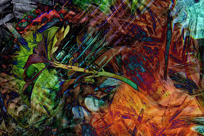 Chaos In Solitude V Art Print