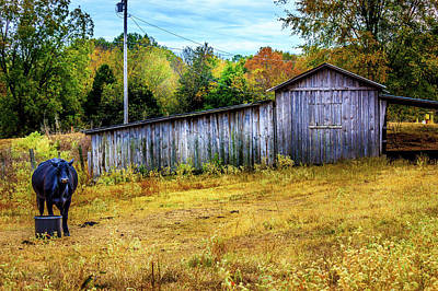Photograph - Chapel - Hill Barn by Barry Jones