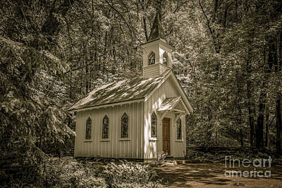 Nikki Vig Royalty-Free and Rights-Managed Images - Chapel in the Woods by Nikki Vig