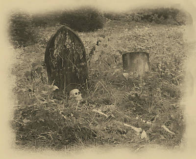 Photograph - Chapman Skeleton by Buddy Scott