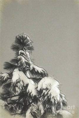 Forrest Drawing - Charcoal Drawing Blue Sky, Climate Change At Southern Californi by Eiko Tsuchiya